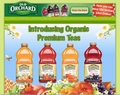 orchard02.jpg
